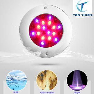 Màu sắc đèn led hồ bơi tạo điểm nhấn